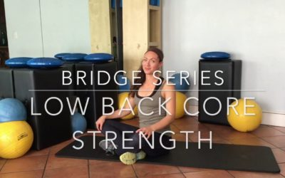 Fight and Prevent Back Pain with BRIDGE SERIES for Low Back Core Strength