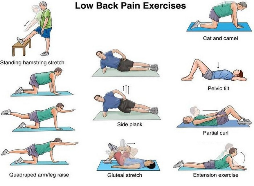 Low Back Exercises and Stretches