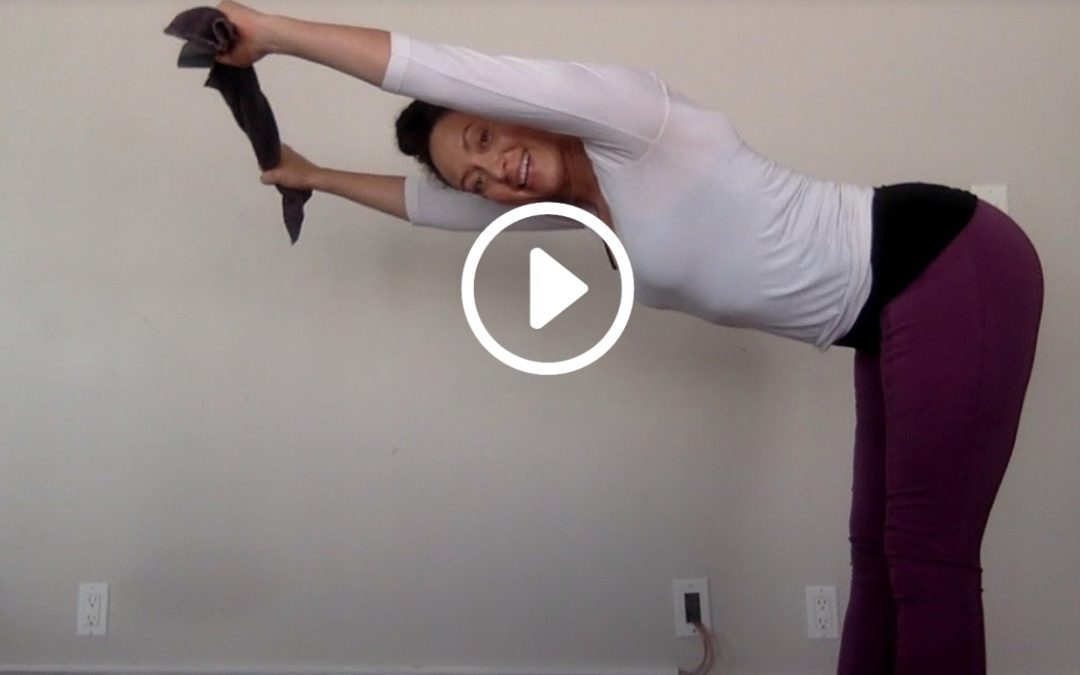 Full Body Best Exercises for Posture and Back Strength